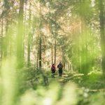 Luonto ja ympäristö